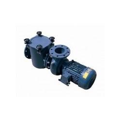 Filter Lid Gasket 5.5HP - 12.5HP