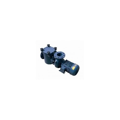 Motor Seal Pump - FD15